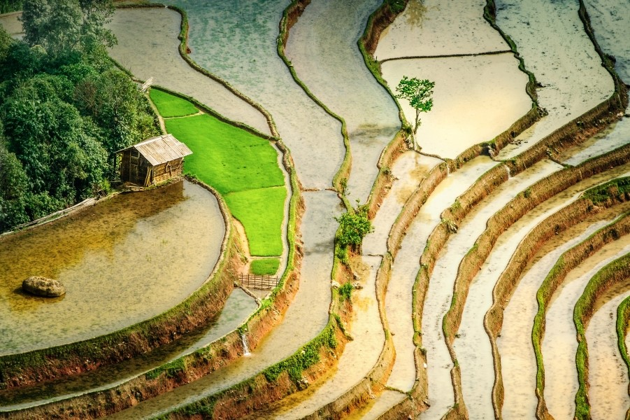 Hoang-Su-Phi-mua-nuoc-do-2